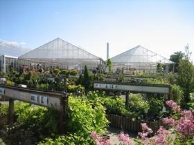 Planteskole viborg | Møbler til terrassen og haven